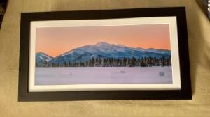 "Algonquin in Winter 10""x20"" framed print"