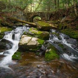 Getting the Shot – Falls Brook, Indian Lake, NY